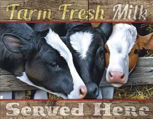 Farm Fresh Milk at diecastdepot