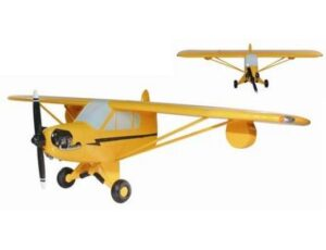 CUB AIRPLANE - 3 D WALL DECOR